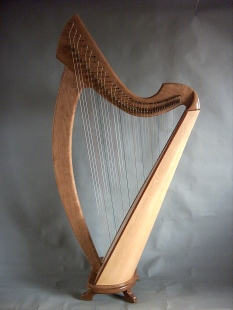 The Joy 38 Professional harp